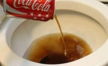20 Reasons Why You Shouldnt Drink Coca Cola